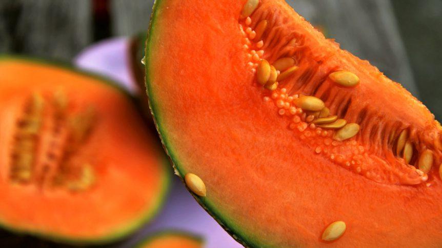 Orange vegetable melon | Monica-Approved Erogenous Zones For Women | women's erogenous zones | Featured